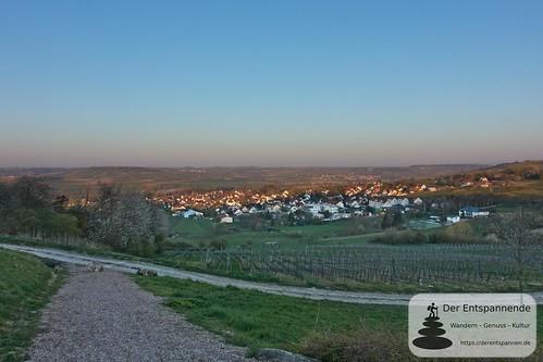 Blick auf Elsheim vom Hieberg aus