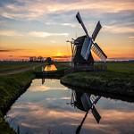 Windmill 't Witte Lam