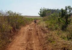 Trek from Kalaw to Nyaungshwe