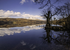 Photo of Loch Tay Reflections-1594