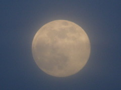 Photo of Supposed to be a pink super moon