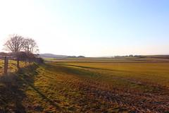 Photo of shildon farmland