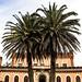 01 Castillo de Piria