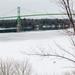 Deer and 1000 Islands Bridge