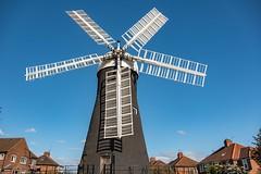 Holgate Windmill, April 2020 - 3