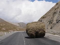 Local transport, Pamirs.
