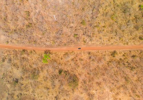 Green solitude in Senegal