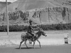 A boyand his donkey.