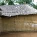 Housing walls, Amazonia 2004