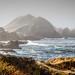 Coastal Rock at Point Lobo