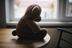 Lonely teddy bear in quarantine.
