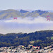 The Golden Gate and San Francisco's mist