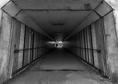 "Underpass <a style=""margin-left:10px; font-size:0.8em;"" href=""http://www.flickr.com/photos/35884794@N04/49779477013/"" target=""_blank"">@flickr</a>"