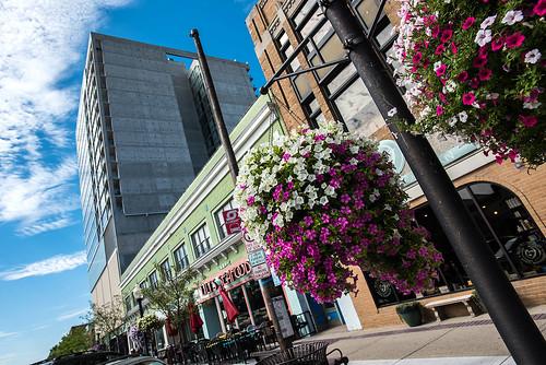Downtown royal oak michigan copyright jeff white 12
