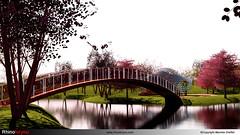 Archi extérieure-Rhinoforyou-LandsDesign-VisualArq-Vray-Grasshopper-05
