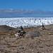 0493 - Grönland 2019 - Kangerlussuaq