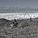 0494 - Grönland 2019 - Kangerlussuaq