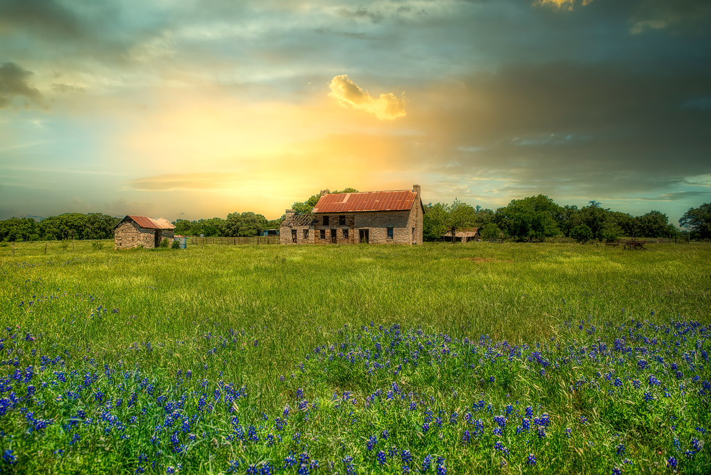 Bluebonnet House - Texas