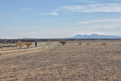 Wabah Crater run