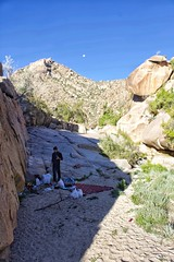 Morning camp in a wadi