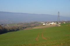 Field @ Chêne-en-Semine