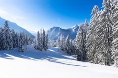 Winter Landscape Austria