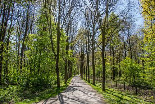 Natuurpark Lelystad - 2991