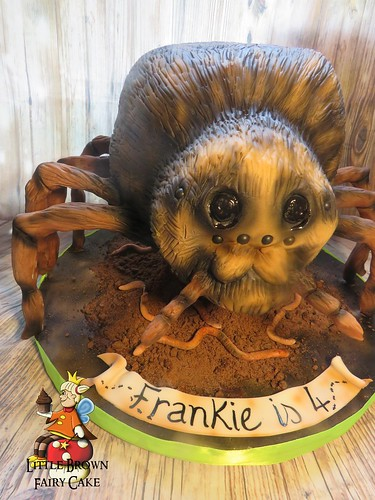 a spider frank