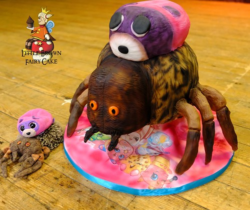 a spider tranch