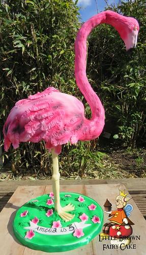 a flamingo out