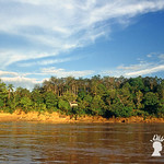Paesaggio lungo il Sungai Sut, Affluente del Rajang, Sarawak, Malesia