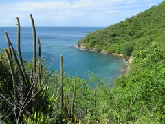 North Coast of Bequia
