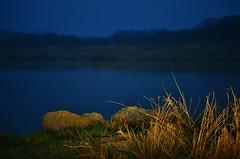 Fishing Lake.