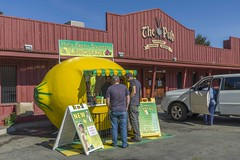 Phil's Fresh Squeezed Lemonade, Ukiah, California