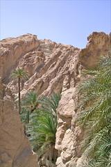 Paysage de Chebika (Tunisie)