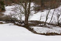 Ruisseau des Otalets @ Plateau du Revard