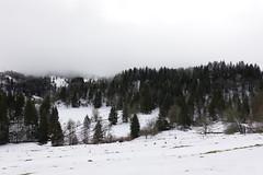 Plateau du Revard