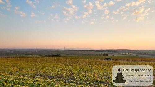 Blick zum Taunus - SunriseRun Dalheim/Friesenheim