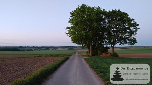 SunriseRun Dalheim/Friesenheim