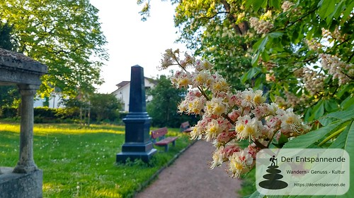 Kastanienblüte auf dem alten Friedhof Selzen - SunriseRun Dalheim/Friesenheim