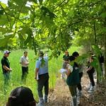 Peru Ecudaor Cochran - field visit in NC