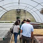 Peru Ecuador Cochran - greenhouse