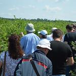 Farm tour with fellows
