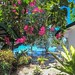Ocean Front at The Three P Holiday & Dive Resort, Romblon Island