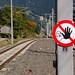 Lermoos - Kleinbahnhof-Impressionen (5)