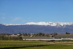 Le Reculet @ Snow @ Jura @ Promenade de l'Aire