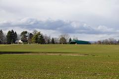Field @ Promenade de l'Aire