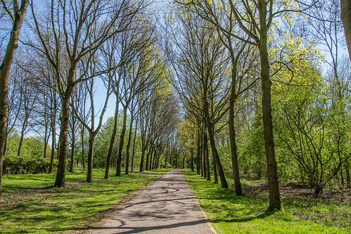 Natuurpark Lelystad - 2966