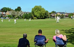 Photo of Easingwold CC: Enjoying cricket in the shade
