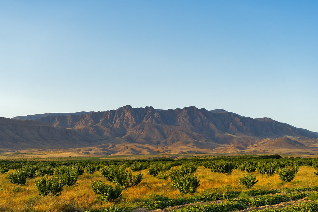 фото: Armenia 65